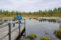 Two children studying nature in a bog environment Stock Photo