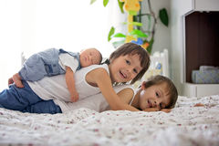 Two children, toddler and his big brother, hugging and kissing t. Heir newborn baby brother at home, few days after delivery Stock Image