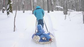 Two children walk in the winter Park. Riding in a sleigh. Outdoor activities and walking. Two children walk in the winter Park. Outdoor activities and walking stock video footage
