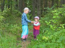 Two children in wood. The boy allows to the little girl to blow on a dandelion stock photos