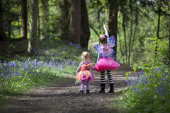 Two children in a wood filled with spring bluebells Royalty Free Stock Photos