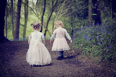 Two children in a wood filled with spring bluebells Royalty Free Stock Photography