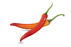 Two Chili pepper. Isolated on a white background Royalty Free Stock Images