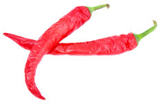 Two Chili Peppers Royalty Free Stock Photography