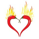 Two chili peppers forming a shape of heart. Hot lover symbol. Fire heart of chili peppers. Hot  valentine love symbol to azian mexican cooking. Element for Stock Images