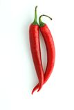 Two chili peppes Royalty Free Stock Image