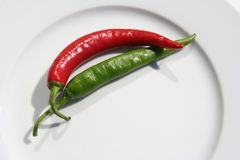 Two chilies (1). Red and green chili on a plate Royalty Free Stock Images