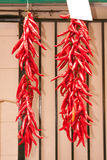 Two Chilli Strings. Two strings of red chilli peppers hanging outside a grocery shop Royalty Free Stock Photo