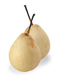 Two Chinese pear isolated Royalty Free Stock Photography