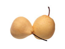 Two chinese pears Stock Photos