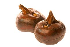 Two Chinese Water Chestnuts. A pair of Chinese Water Chestnuts on white stock photography