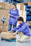 Two chinese workers in warehouse Royalty Free Stock Photography