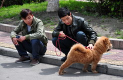Pengzhou, China: Two Men with Dog Stock Images