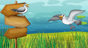 Two chirping birds. Illustration of two chirping birds in the field Royalty Free Stock Photos