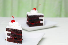 Two Chocolate black Forest cake with cherries. With a green background Royalty Free Stock Photo