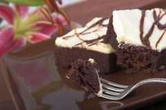 Two chocolate brownies. Brownies on plate, focus on tip of fork royalty free stock images