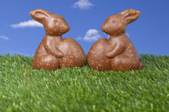 Two chocolate bunny candies Royalty Free Stock Photography