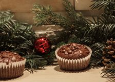 Two chocolate chip cupcakes royalty free stock image