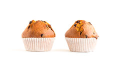 Two chocolate chip muffins Royalty Free Stock Photo