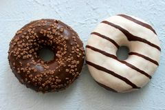 Two chocolate-coated doughnuts isolated royalty free stock image