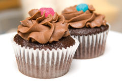 Two Chocolate Cupcakes. With chocolate frosting and candies on top Stock Photos