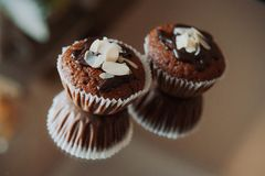 Two chocolate cupcakes Stock Photos