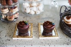 Two chocolate cupcakes on a dessert table Royalty Free Stock Image