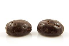 Two chocolate ginger nuts in closeup Royalty Free Stock Photos