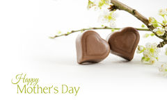 Two chocolate hearts and flowering branches  with shadow Stock Photography