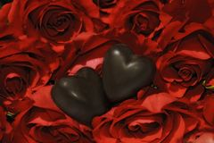 Two chocolate hearts and ruby red roses Stock Photo