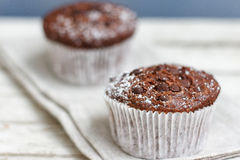 Two chocolate muffin Royalty Free Stock Image