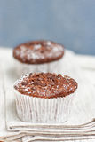 Two chocolate muffin Royalty Free Stock Images