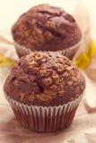 Two chocolate muffins Stock Photo