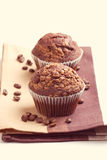 Two chocolate muffins Stock Images