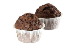 Two Chocolate Muffins Royalty Free Stock Images