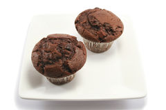 Two Chocolate Muffins on a Plate. Two delicious chocolate chip muffins on a square china plate Stock Photos