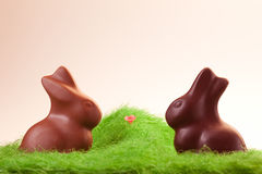 Two chocolate rabbits on grass Royalty Free Stock Photos