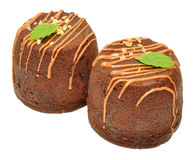 Two Chocolate Sponge Puddings Stock Photography
