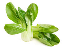 Two choi cabbage Royalty Free Stock Photo