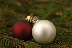 Two Christmas balls. A red and a white Christmas ball on evergreen branches Stock Photography