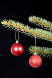 Two christmas balls hanging on a tree. Stock Photography