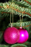 Two christmas balls hanging on a tree. Royalty Free Stock Photo