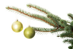 Two christmas balls hanging on a tree. Stock Photos