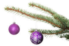 Two christmas balls hanging on a tree. Stock Image