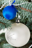 Two christmas balls on a twig. Royalty Free Stock Image