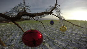 Two Christmas baubles on branch, 4K. Two Christmas baubles on branch in snowy field, 4K stock video