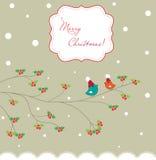 Two Christmas birds Stock Image