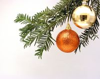 Two Christmas decorations hanging from a tree. Two gold and bronxze Christmas decorative balls hanging from a Christmas tree Stock Images