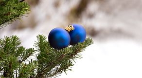 Two christmas glass balls on the tree Royalty Free Stock Photo