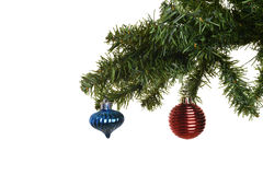 Two christmas ornaments on branch Royalty Free Stock Photography